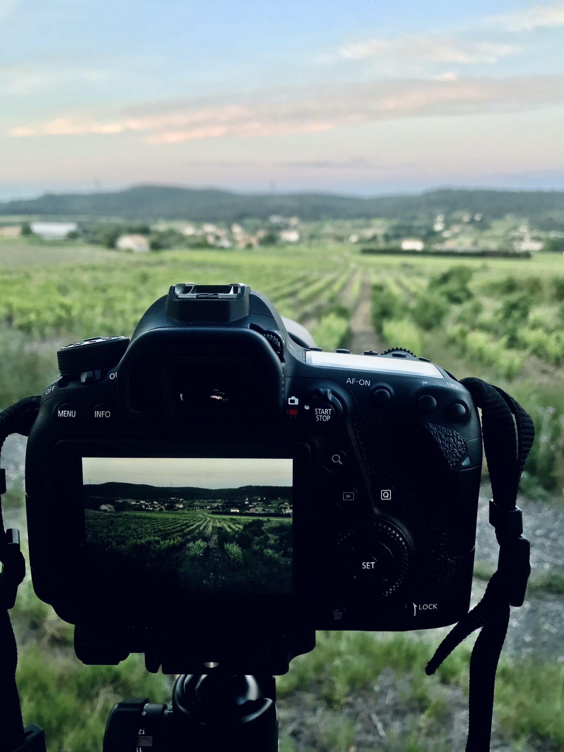 appareil photo dans les vignes